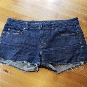 Martin + osa  Jean shorts 30 R6